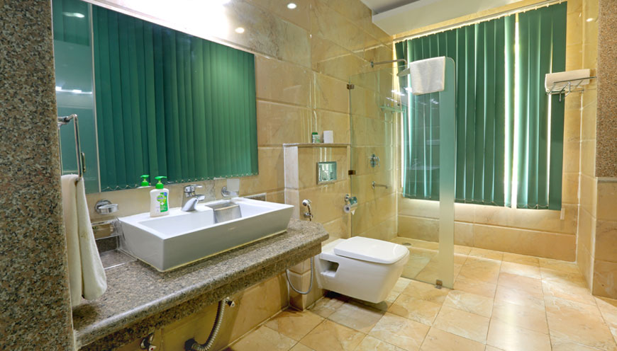 images/subcate/456_bathroom-executive-suite-ro.jpg